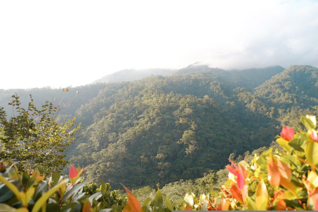"ALT=""vista tala resort insta-worty place in bataan"""