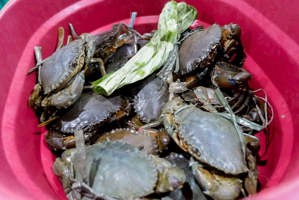 """ALT=""""scrumptious crabs in the western visayas region"""""""
