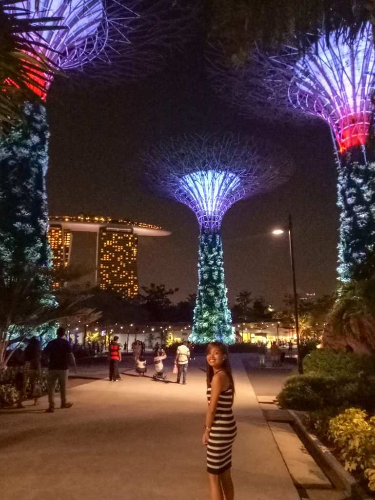 """ALT=""""singapore travel guide gardens by the bay"""""""