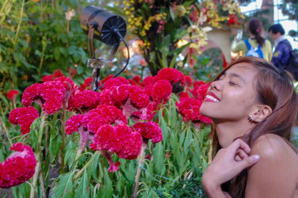 "ALT=""gardens by the bay singapore travel"""