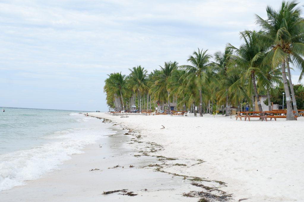 "ALT=""alona dumaluan beach bohol island"""